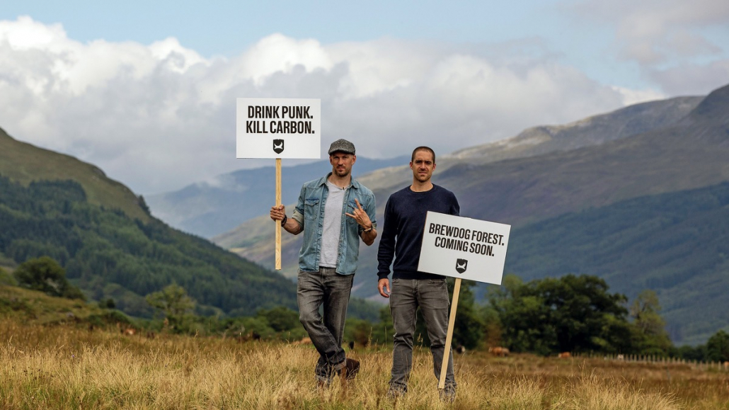 Brewdog are carbon negative - forest in Scotland