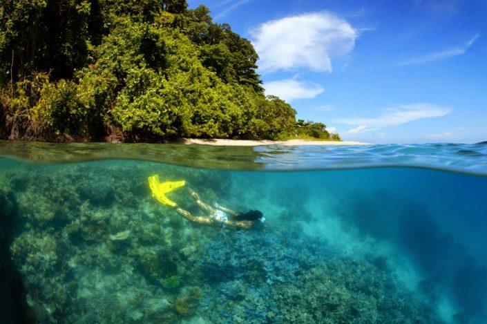 Snorkelling at Walindi, Papua New Guinea