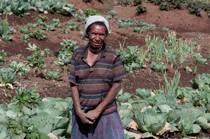 Gardening in Mount Hagen, Papua New Guinea