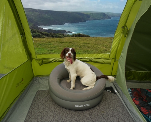 UK Dog-Friendly Coastal Campsites - Adventure Bagging