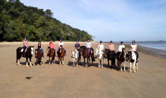 Isle Of Wight beach horse riding