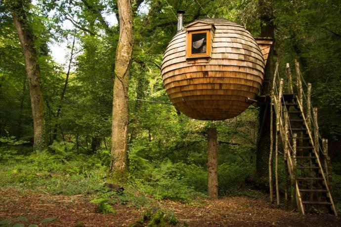 Lost Meadow Treepod - Bodmin, Cornwall
