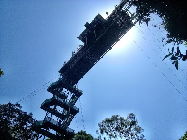Looking up at the jumping platform at the AJ Hackett site, Cairns