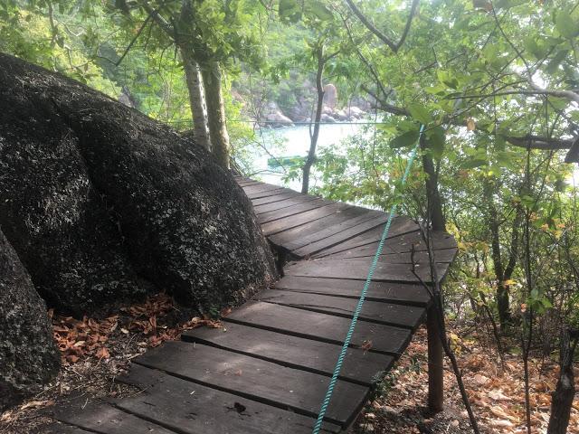 One of the many slatted wooden walkways on Mumbo Island
