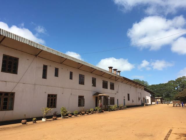 Satemwa tea factory, Thyolo, Malawi