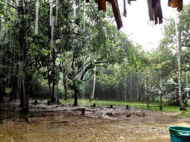Torrential rain at Tayrona National Park