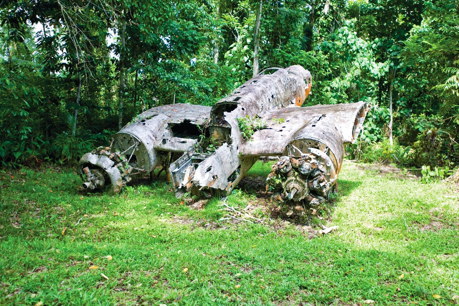 An old World War 1 plane wreck near Madang - Papua New Guinea