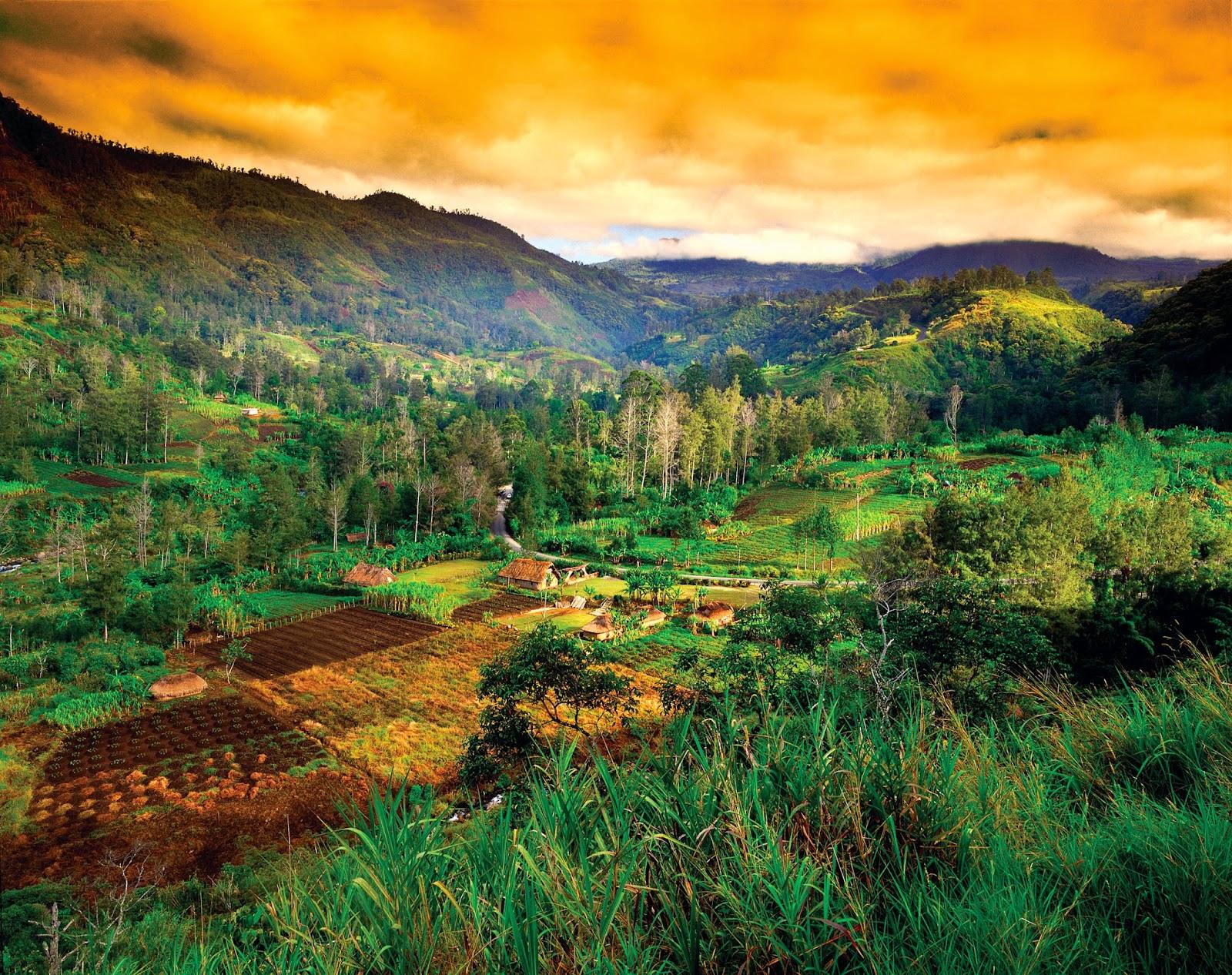 A RURAL SETTING NEAR MOUNT HAGEN - Papua New Guinea