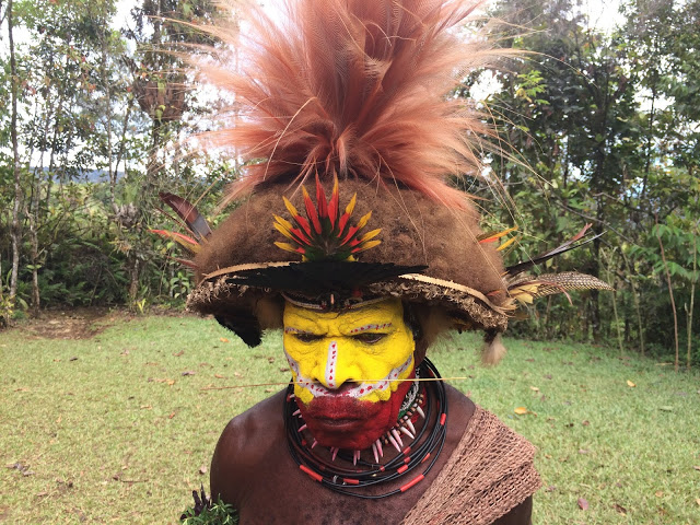 A Huli wigman with Raggiana Bird of Paradise feathers in his headdress