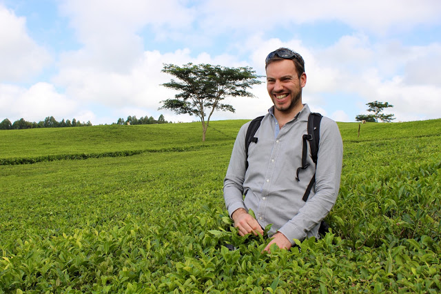 Simon enjoying wading through the tea bushes of the Satemwa estate, Malawi
