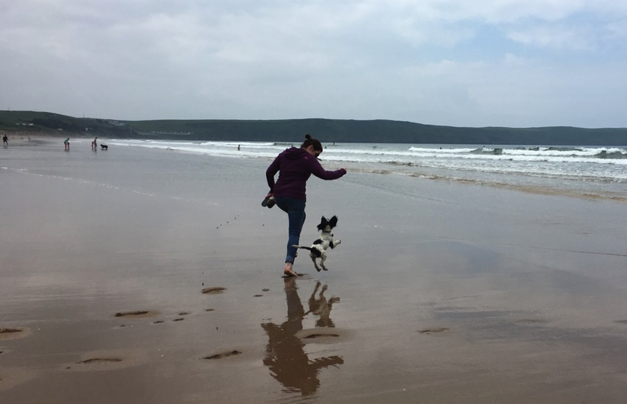 Juniper and Lucy having fun on Woolacombe beach!