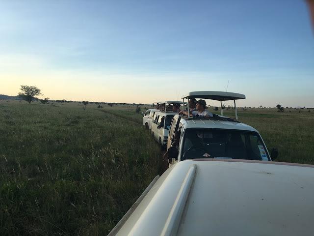 Safari vehicles in Tsavo West, Kenya