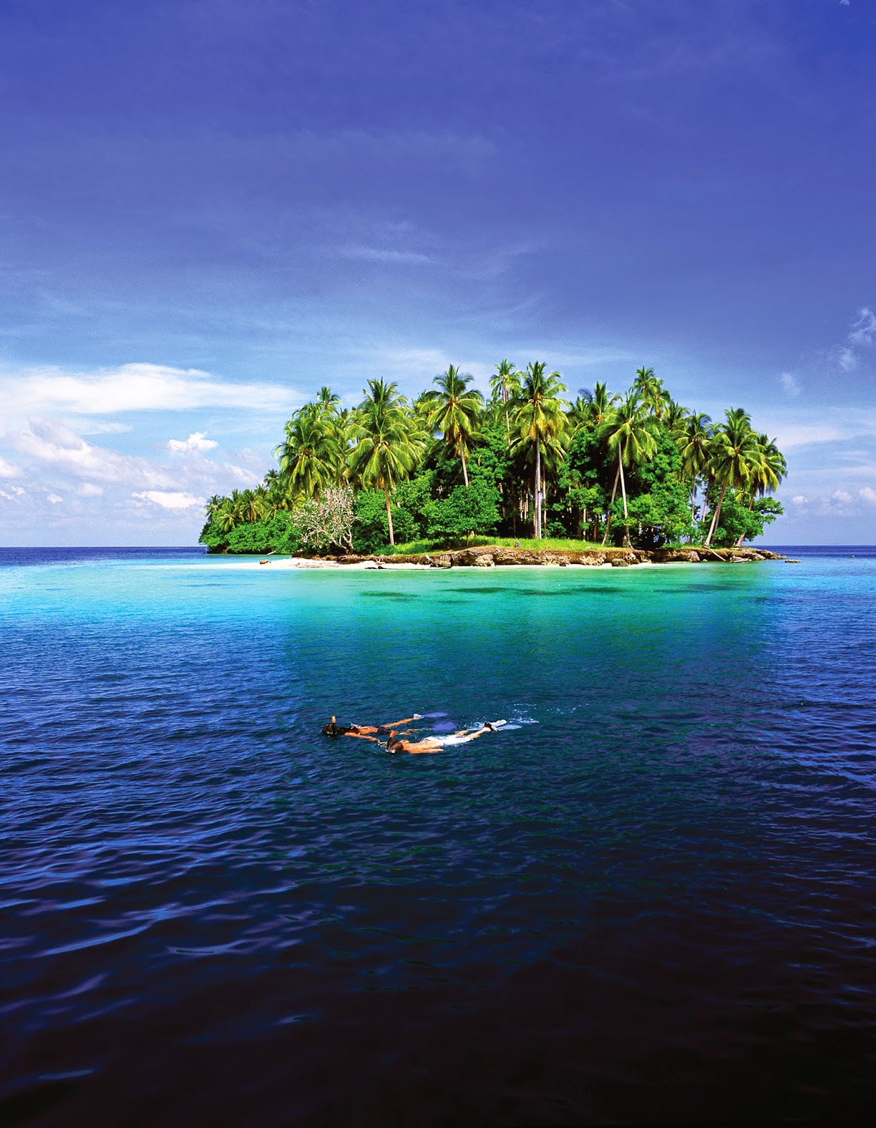 SNORKELLING NEAR MADANG HARBOUR - Papua New Guinea
