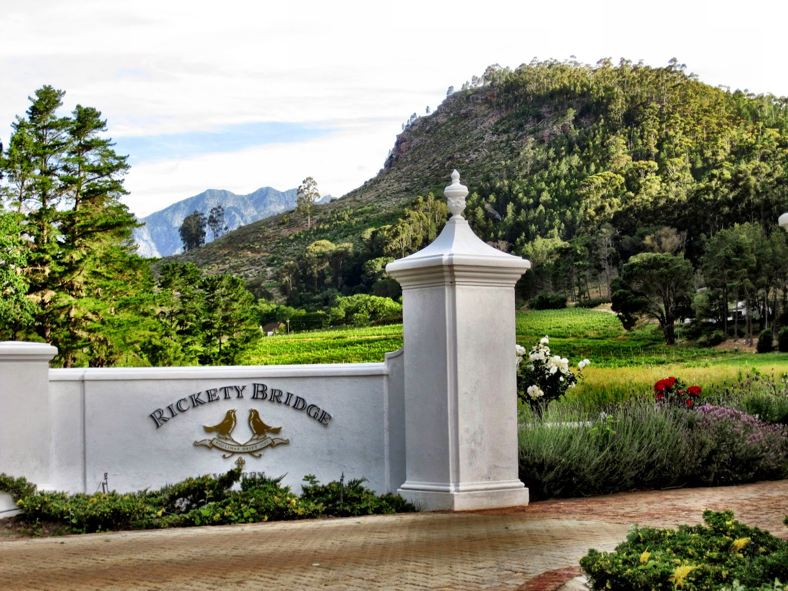 Rickety Bridge vineyard entrance, Franschhoek