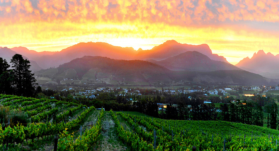 View of Franschhoek from Dieu Donne