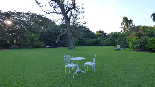 Huntingdon House front lawn - Satemwa Tea Estate - Malawi